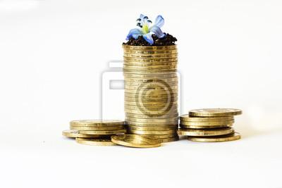 monétaire, la banque