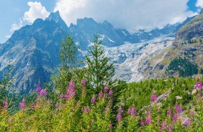 Sticker Mont Blanc Paysage massif