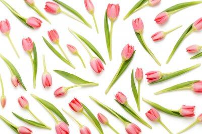 Sticker Motif de tulipes roses sur le fond blanc.