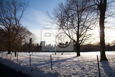 Neige et arbres derrière la clôture avec coucher de soleil