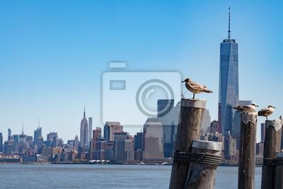 New York Manhattan vue de l'île