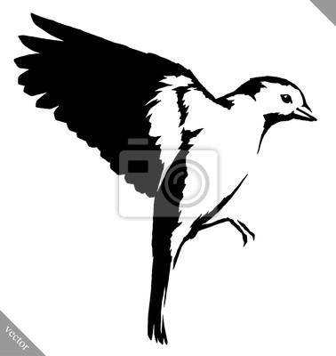 Sticker Noir Blanc Peinture Dessiner Mésange Oiseau Vecteur Illustration