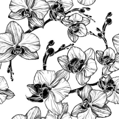 Sticker Noir, blanc, seamless, modèle, orchidée, fleurs