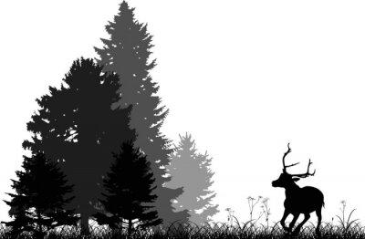 Sticker Noir, cerf, courant, à, sapin, forêt, isolé, blanc