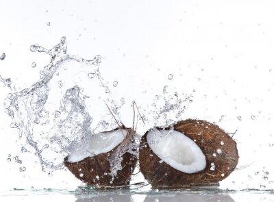 Sticker Noix de coco avec les projections d'eau