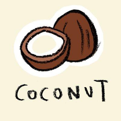 Sticker Noix de coco sur fond pâle
