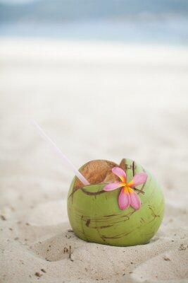 Sticker Noix de coco sur la plage