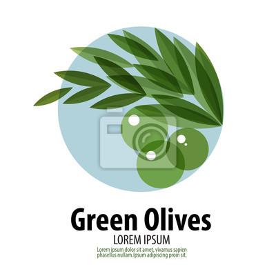 Olives vecteur modèle de conception de logo. la récolte ou l'icône de la nourriture.