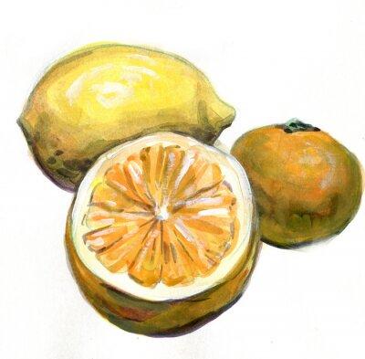 Sticker Orange, citron, mandarine. Les agrumes. La peinture à l'aquarelle