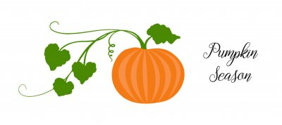 Sticker Orange pumpkin, halloween design, fall or autumn pumpkin illustration with green vine leaves and orange gourd. October harvest season vector, farm vegetable that is healthy and nutritious