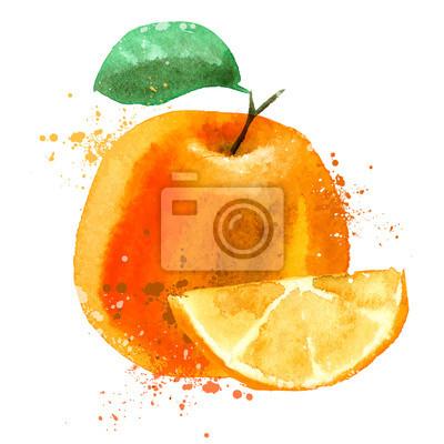Orange vector logo design template. fruit or food icon.