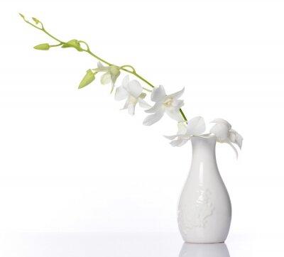 Sticker orchidée blanche
