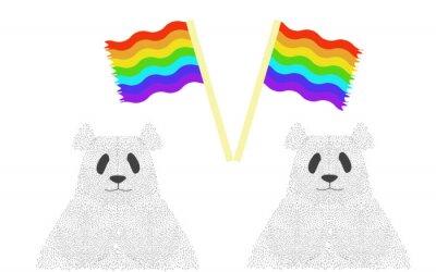 Pandas avec des drapeaux gay