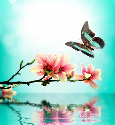Sticker Papillon et fleurs de magnolia