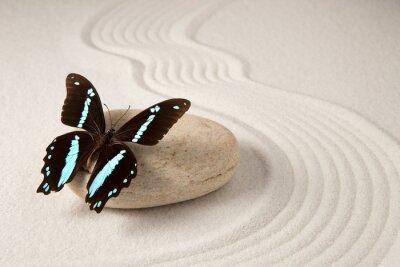 Sticker Papillon zen