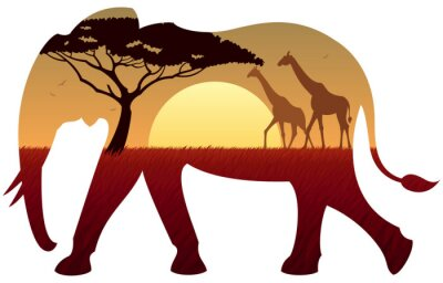 Sticker Paysage d'éléphant