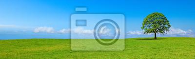 Sticker Paysage de campagne panoramique B