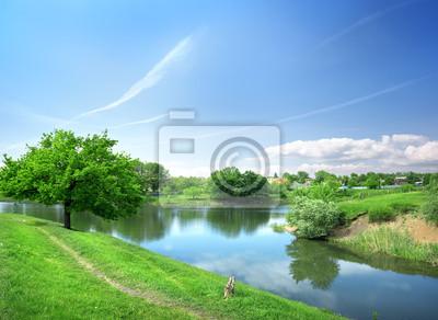 Paysage de printemps avec la rivière