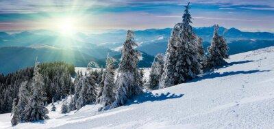 Sticker Paysage panoramique d'hiver dans les montagnes. Les arbres enneigés et les sommets de montagne dans la distance.