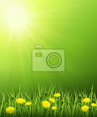 Paysage solaire