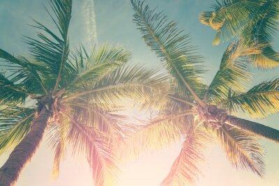 Sticker Paysage tropical avec palmiers et ciel ensoleillé