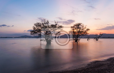 Pendant Seascape Sunrise. Belle marin naturel