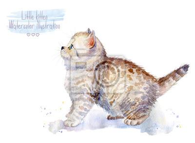 Petit chaton pelucheux Spotted Cat. Aquarelle illustration de chaton. Voir sur le côté.