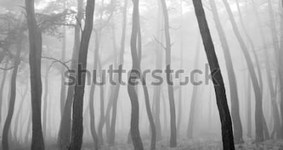 Sticker Pin vu à travers la brume