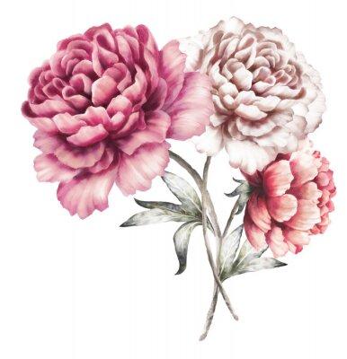 Sticker Pivoines roses. Fleurs d'aquarelle. Illustration florale dans des couleurs en pastel. Bouquet de fleurs isolé sur fond blanc. Feuille. Composition romantique pour le mariage ou la carte de voeux.
