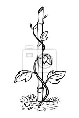 Sticker Plante Grimpante Sur Le Bambou
