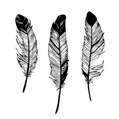Sticker Plumes Dessin Graphique Noir Et Blanc