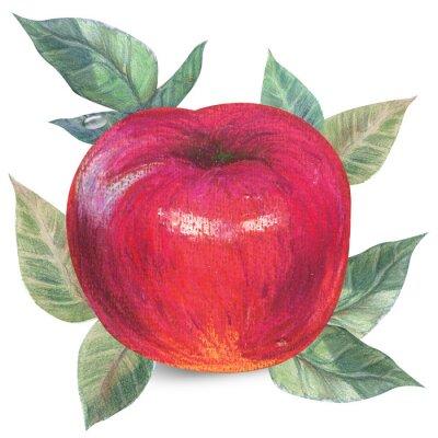 Sticker Pomme, blanc, Coupure, sentier