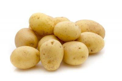 Sticker Pommes de terre sur le fond blanc. New Harvest.