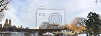 Pont d'arc et lac avec de la neige au Central Park en vue panoramique, New York
