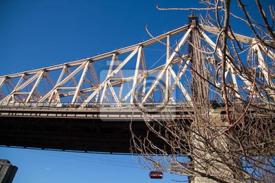 Pont et arbre de Queensboro sans feuilles