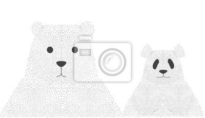 Portrait, panda, ours Mignon, animal, visage