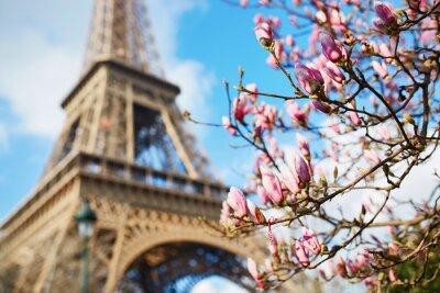 Sticker Printemps à Paris