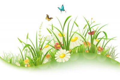 Sticker Printemps, été, pré, vert, herbe, fleurs, papillons