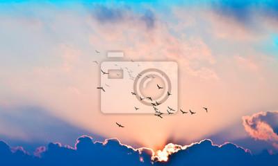 Sticker puesta de sol con rayos de luz entre las nubes