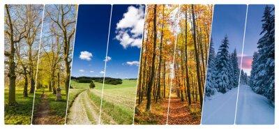 Sticker Quatre, saison, collage, tirs, routes, paysage