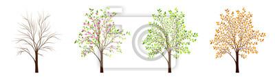 Sticker Quatre saisons de vecteur d'arbre