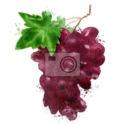 raisins rouges vecteur logo de modèles de conception. la fabrication du vin ou Vineyard