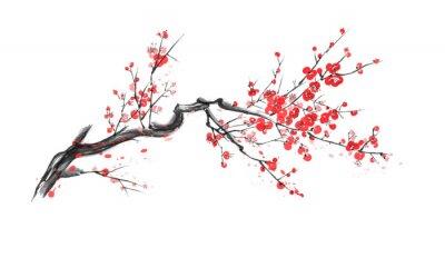 Sticker Realistic sakura blossom isolated on white background.