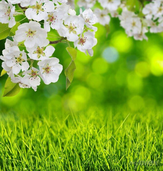 Sticker Ressort, fleur, herbe