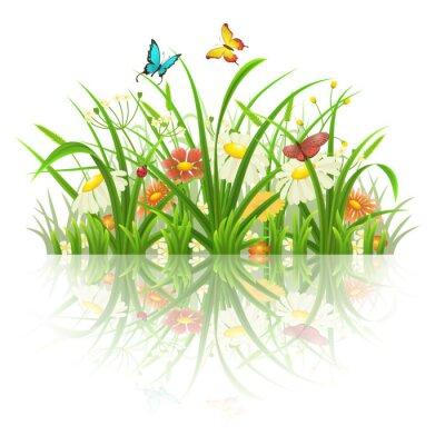 Sticker Ressort, herbe, fleurs, papillons, reflet, blanc