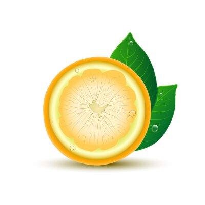 Sticker Résumé, citron, feuilles, gouttes, blanc, fond