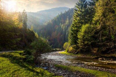 Sticker rivière de la forêt dans les montagnes