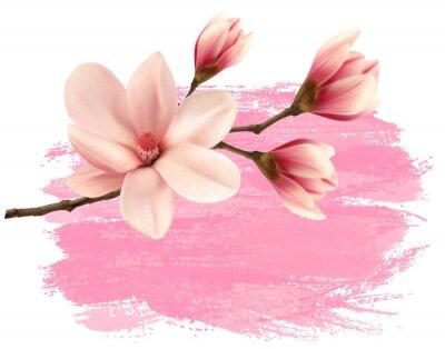 Sticker Rose, peinture, magnolia, branche, bannière Vecteur.