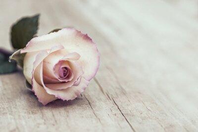 Sticker Rose Vintage