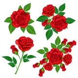 Realiste Rose Rose Illustration Vert Feuille Pour Coin